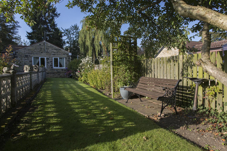 Leylands garden